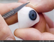 Eyeball3_2