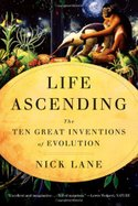 En_nick_lane_life_ascending